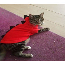 Load image into Gallery viewer, Cats And Dogs Halloween Costume - Pets Costumes