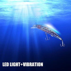 Fish Magnet Flashing LED And vibrate Lures USB Rechargeable