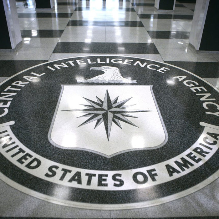 You Don't Have To Be The CIA To Gather Intelligence On The Web!