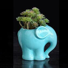 Load image into Gallery viewer, Ceramic Elephant Pots