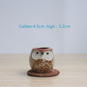 Mini Owl Plant Pot