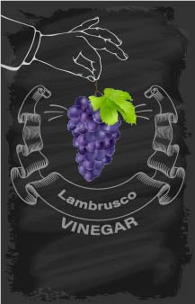 Lambrusco Vinegar