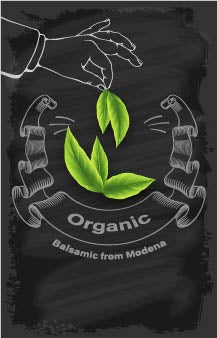 Organic - Balsamic Vinegar of Modena Non GMO 4 Star - Cibaria Store Supply