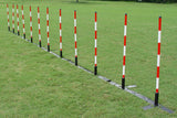 Set of 12 Weave Poles with Adjustable Spacing - Dog Agility USA