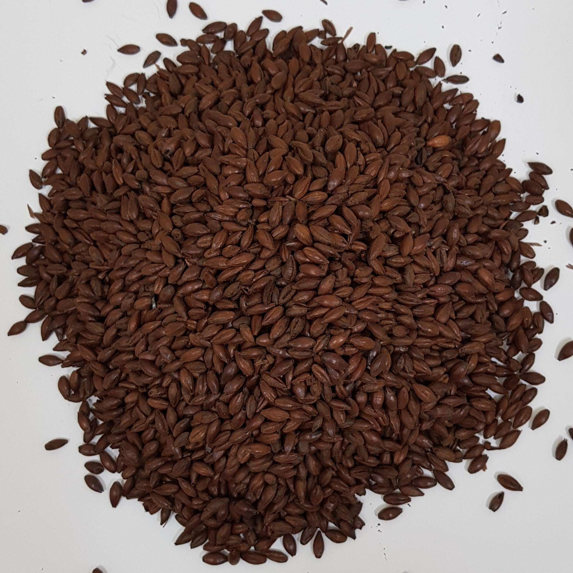 Gladfield Dark Chocolate Malt (Milled)