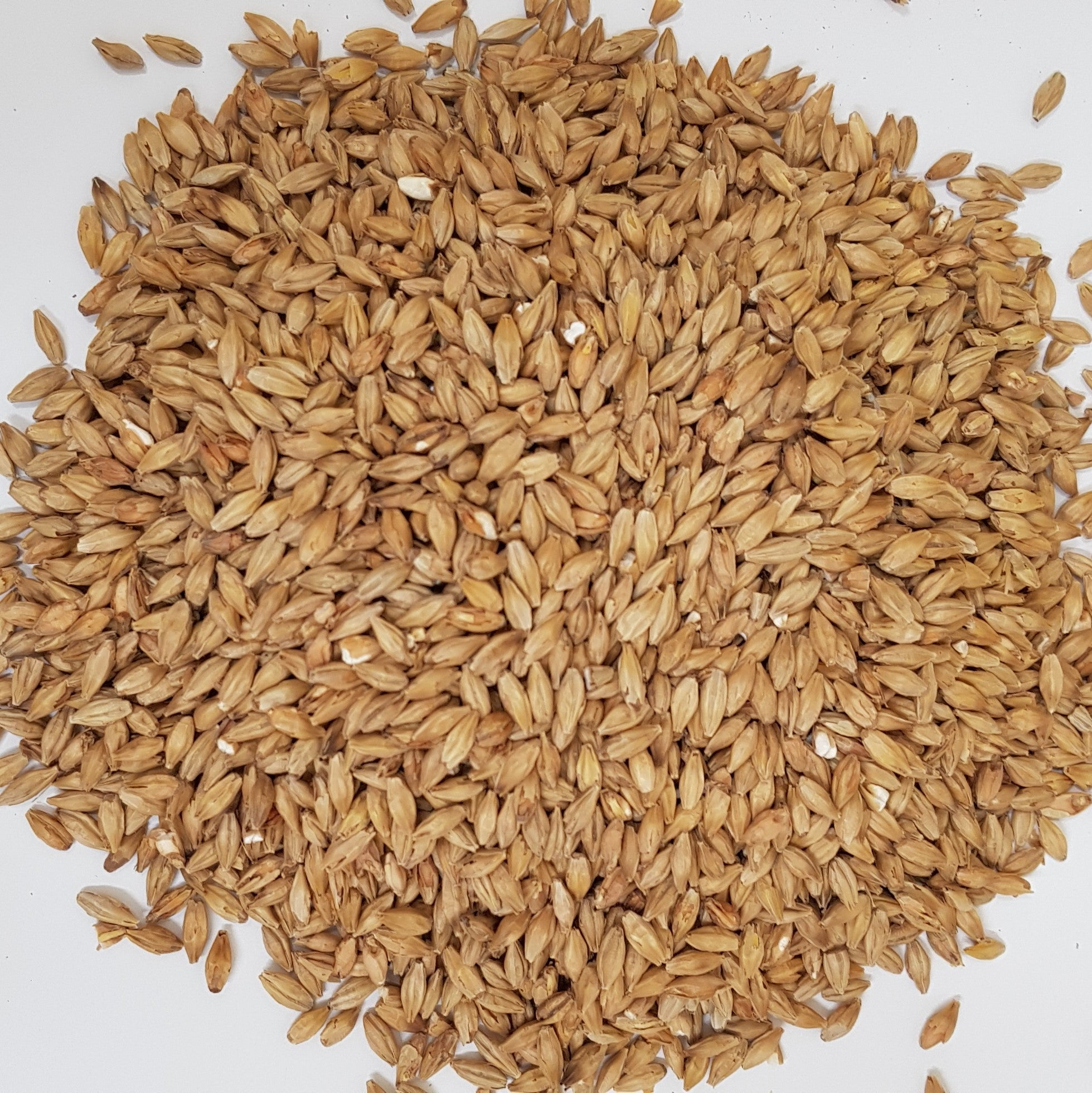 Gladfield Gladiator Malt (Whole)