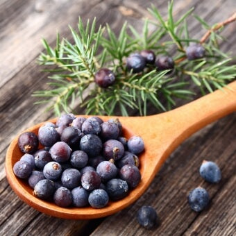 Botanical: Whole Juniper Berries
