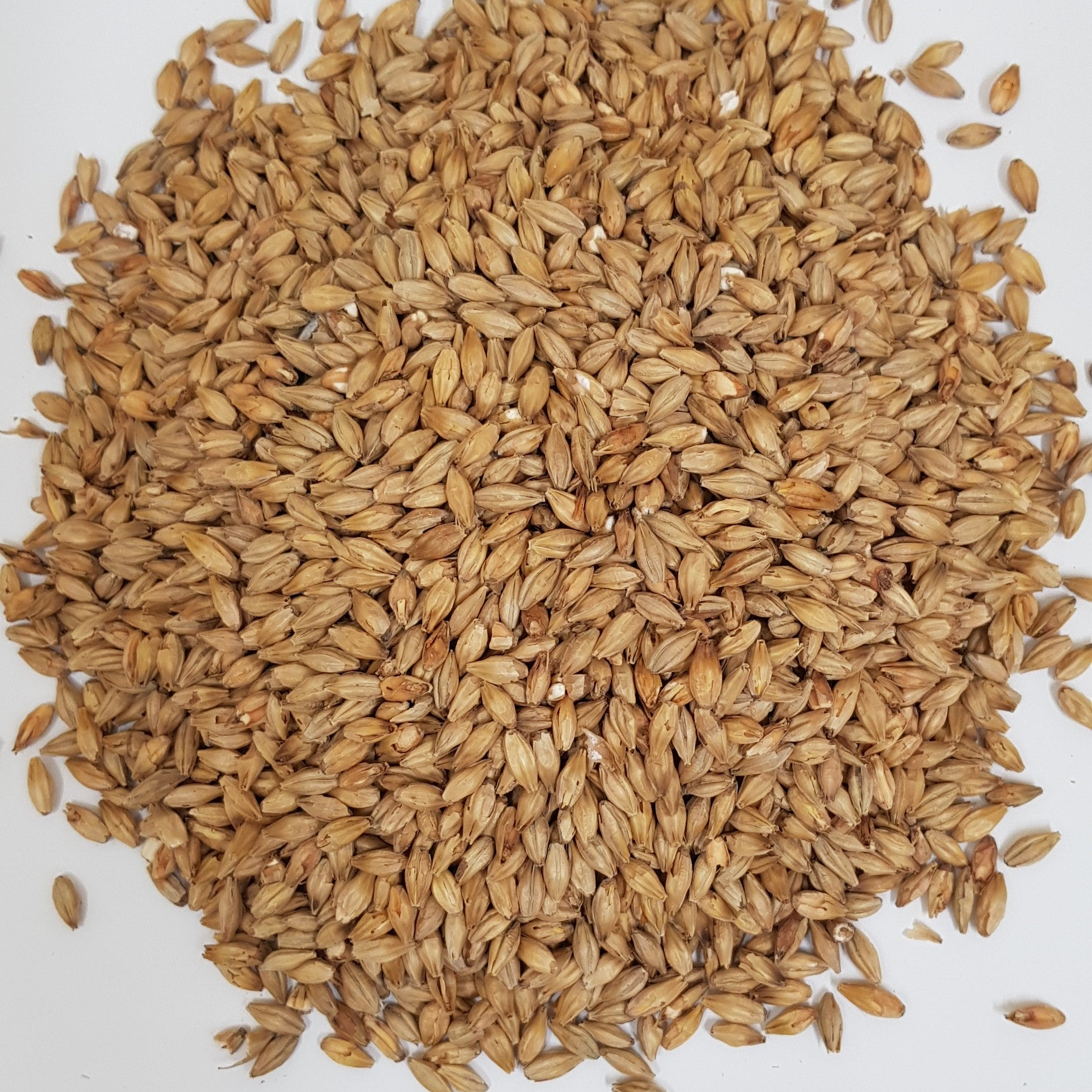 Gladfield Munich Malt (Whole)