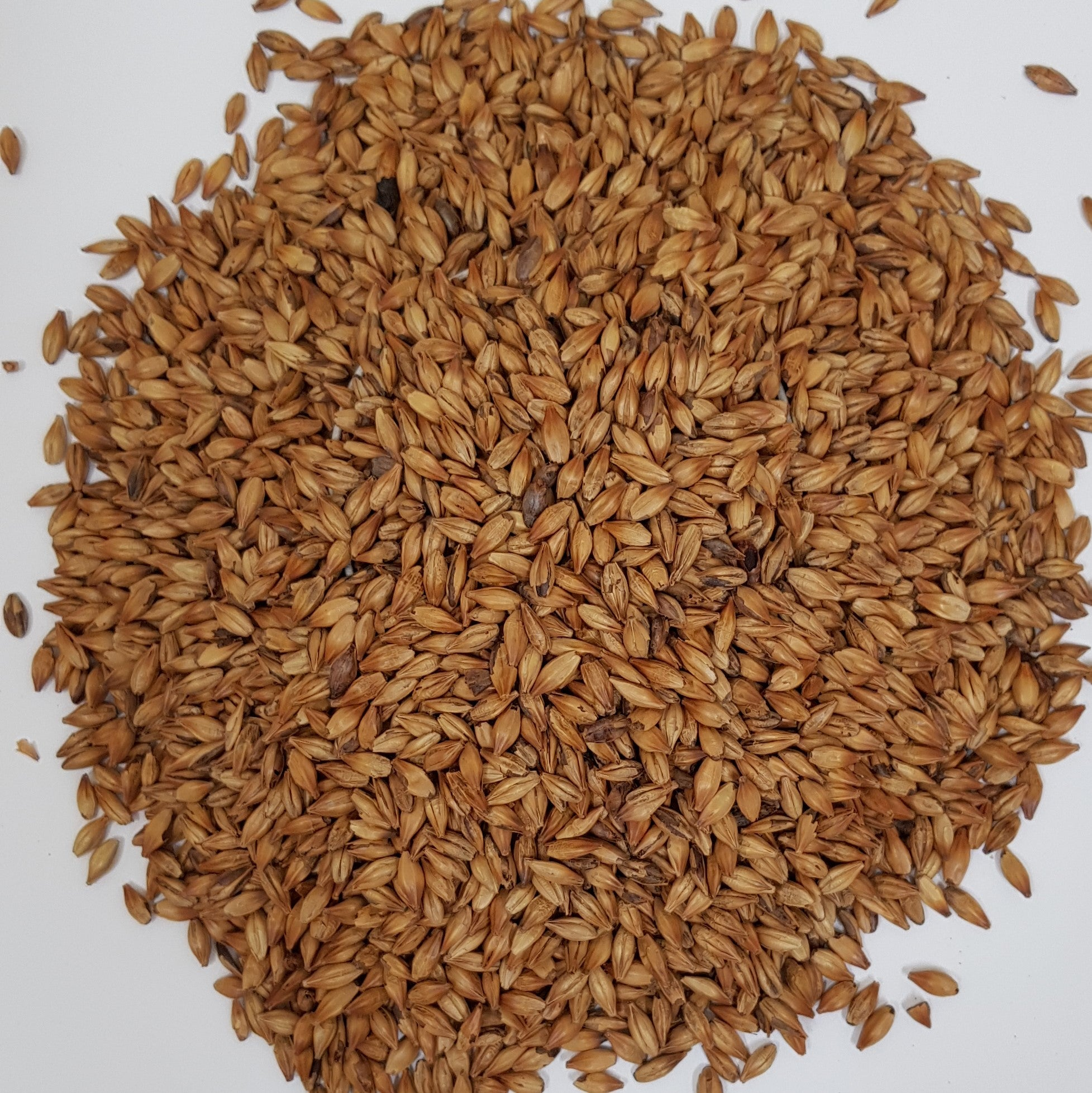 Gladfield RedBack Malt (Milled)