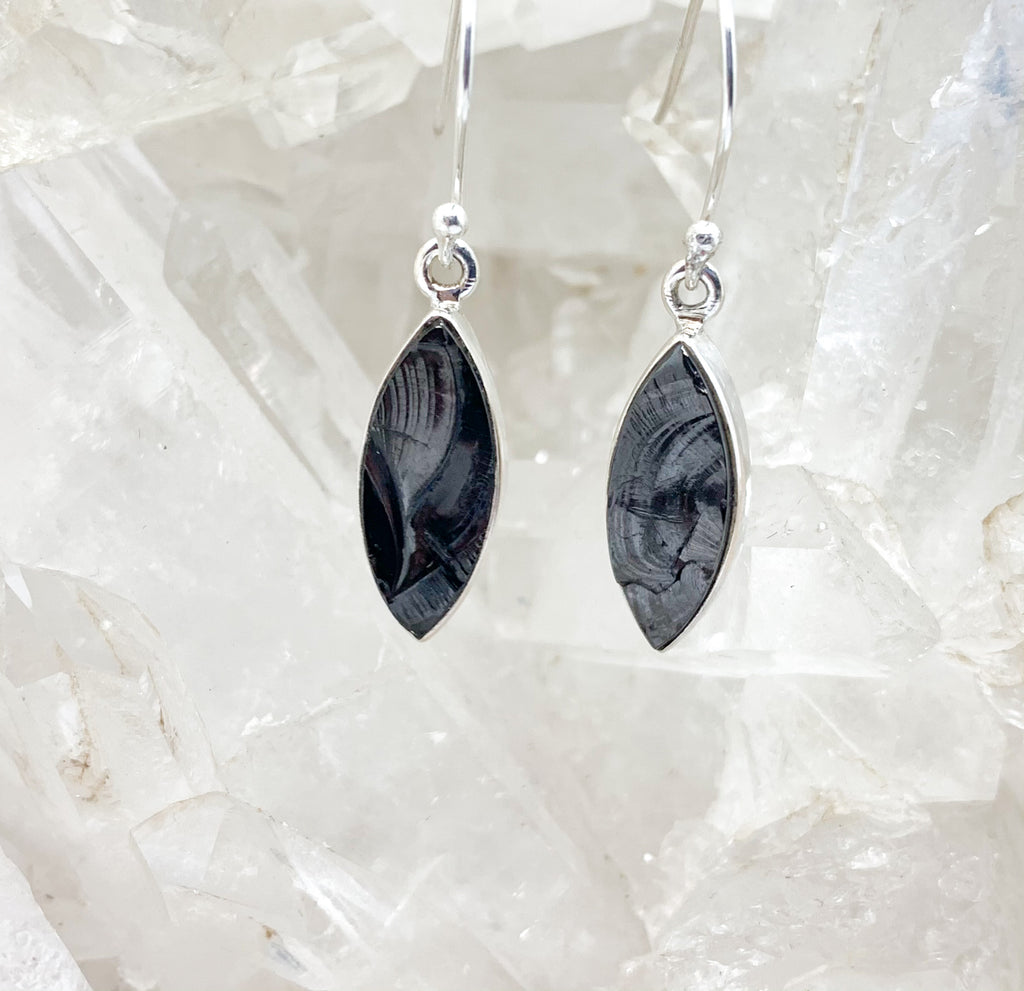 Shungite Earrings $89