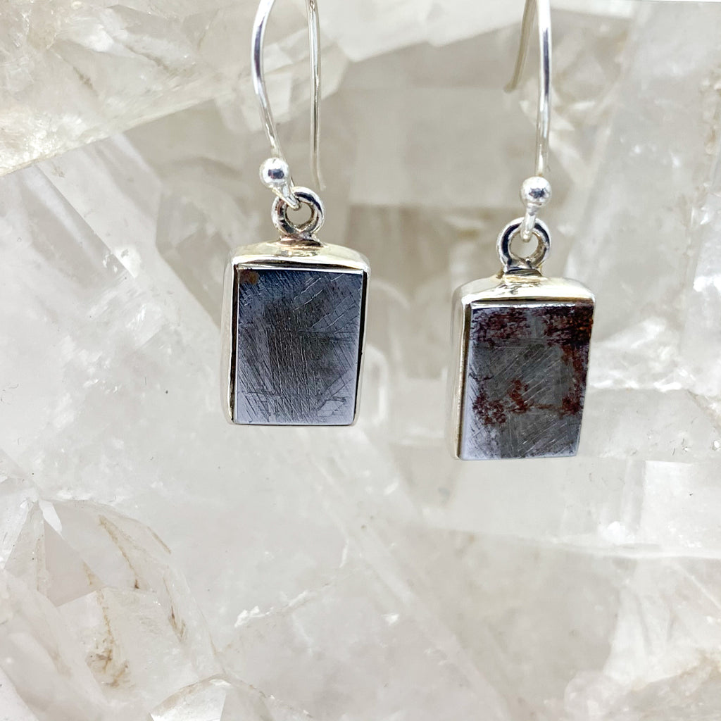 Meteorite Earrings $95