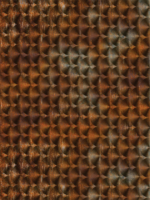 Rusty Scales Printed Photography Backdrop
