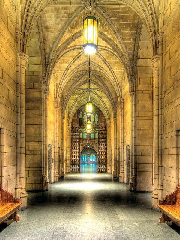 Cathedral of Learning Printed Photography Backdrop