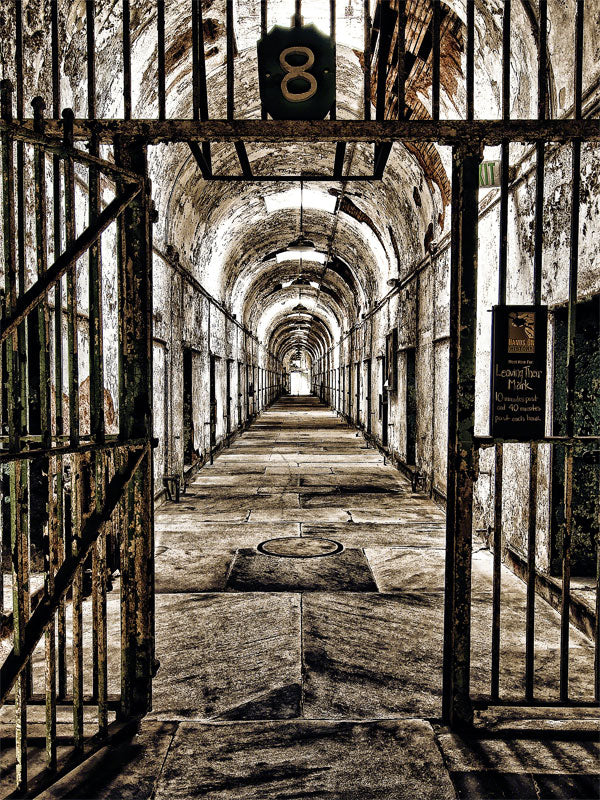 Cell Block 8 Printed Photography Backdrop