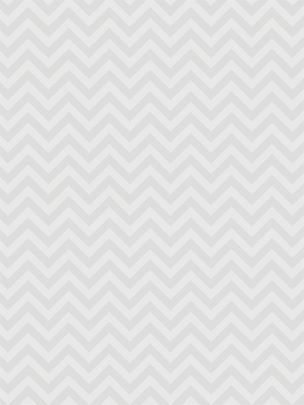 Light Gray Chevron Printed Photography Backdrop