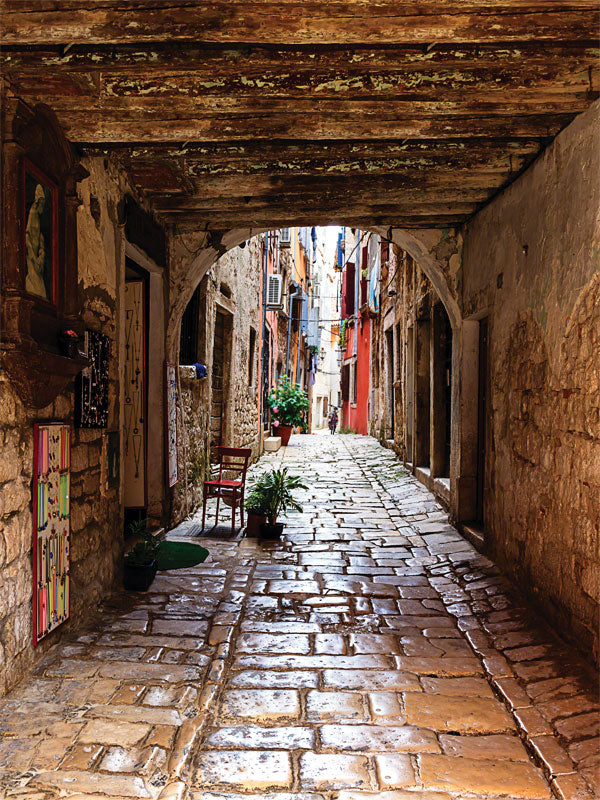 Italian Alley Printed Photography Backdrop