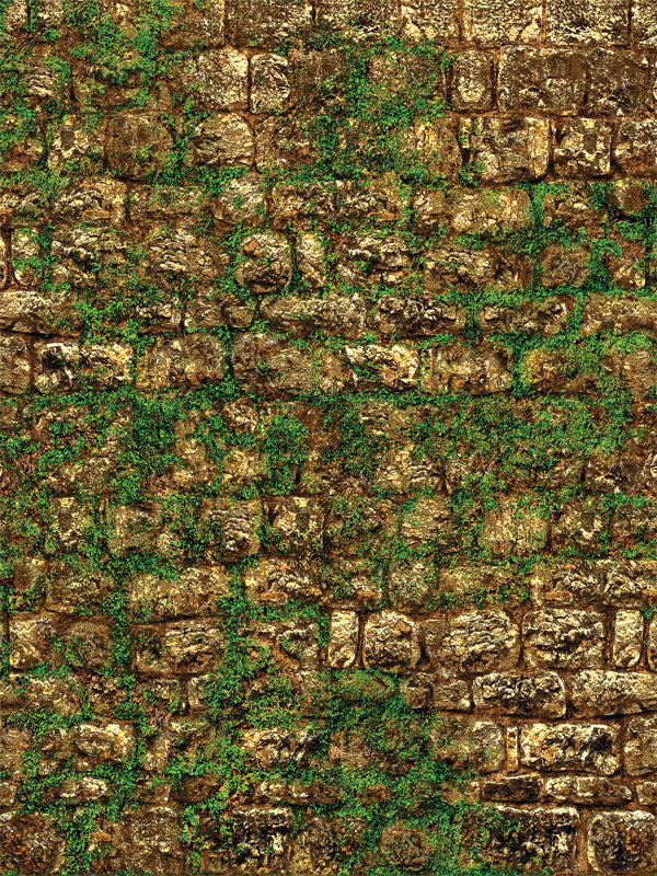 Mossy Stone Brown Printed Photography Backdrop