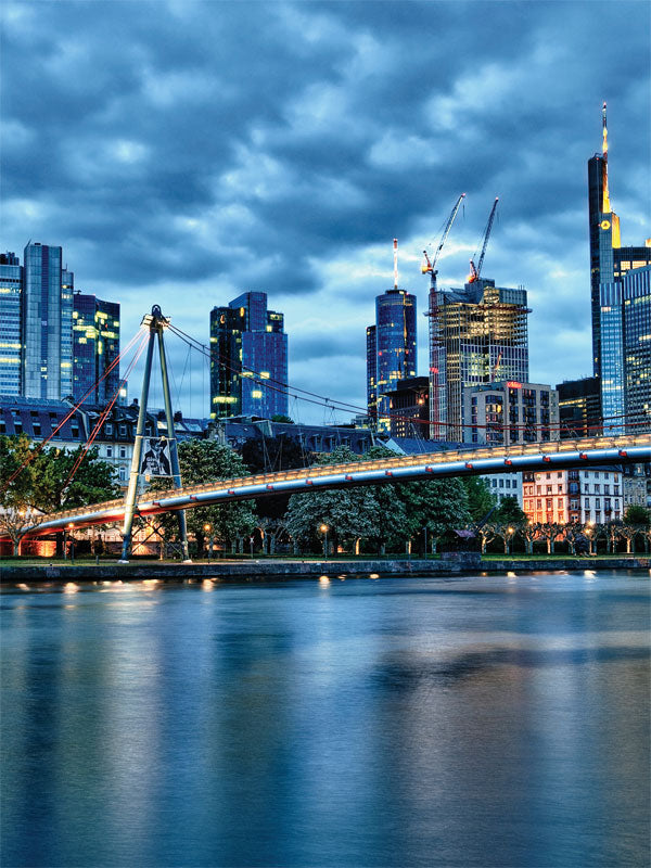Frankfurt Skylline Printed Photography Backdrop