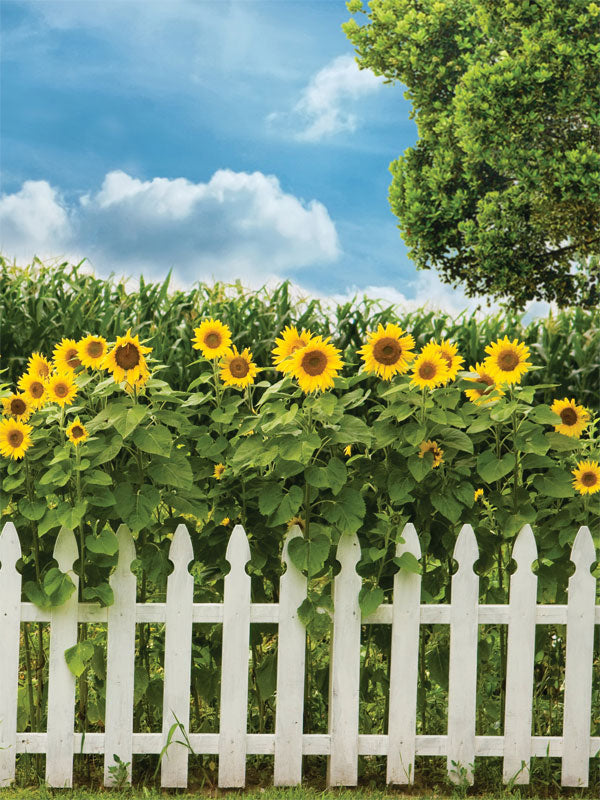 Sunflower Gate Printed Photography Backdrop