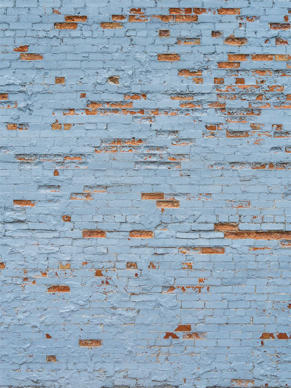Blue Robin Brick Wall Printed Photography Backdrop
