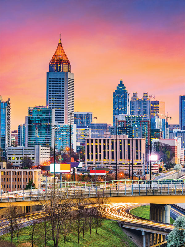 Atlanta Skyline Printed Photography Backdrop