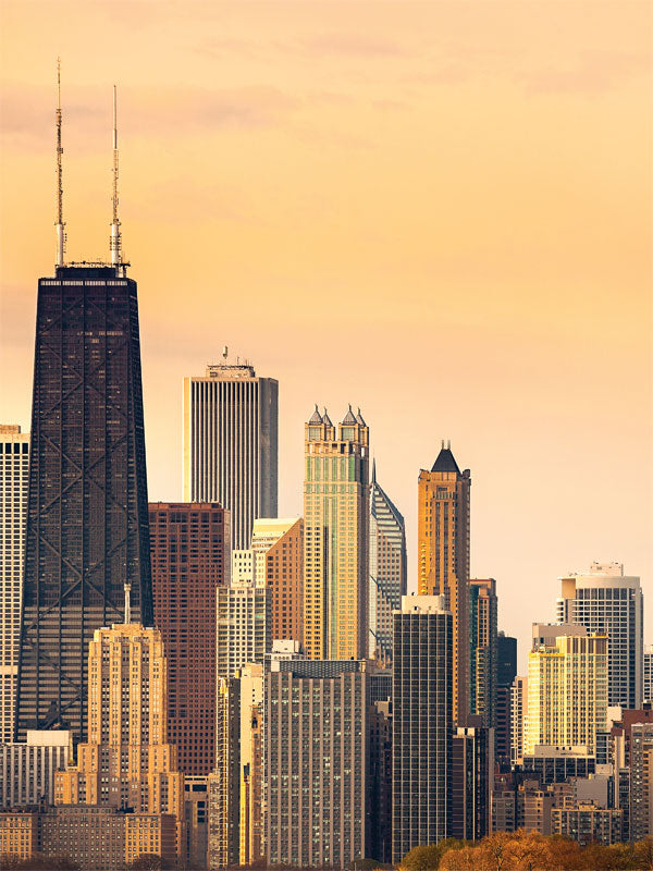 Chicago Skyline Printed Photography Backdrop