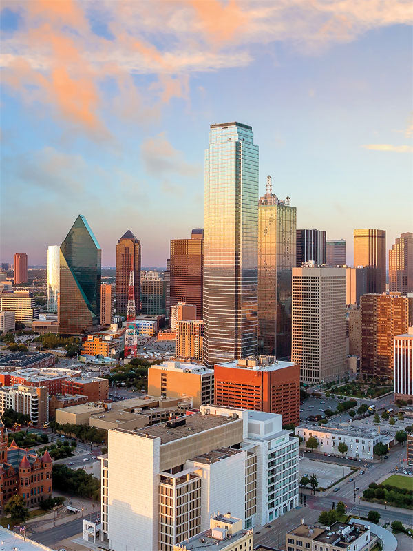 Dallas Skyline Printed Photography Backdrop
