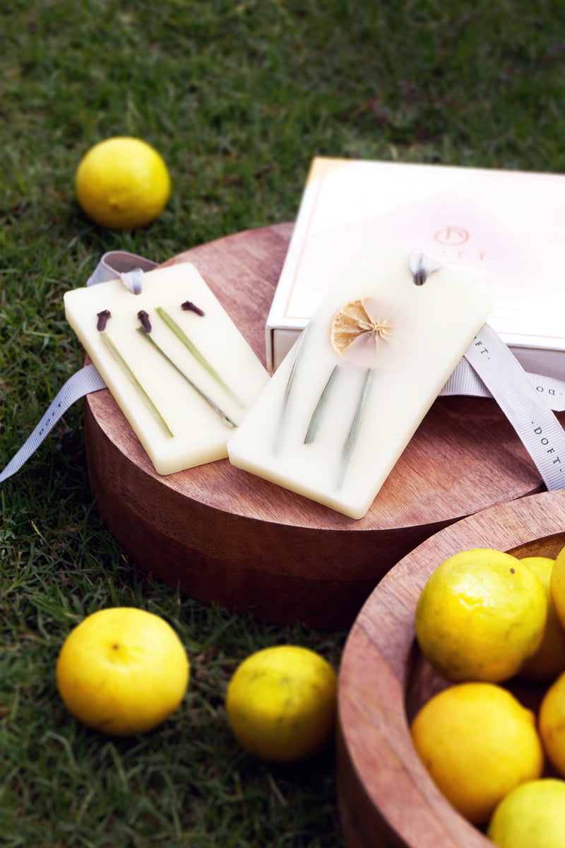Lemon grass and clove- Perfume infused wax tablets (SET of 2)