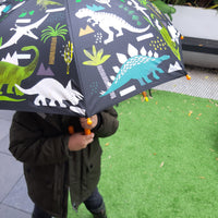 Colour changing dinosaur umbrella - before