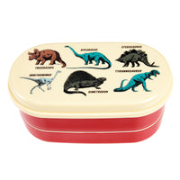 KIds Dinosaur Bento Lunch box