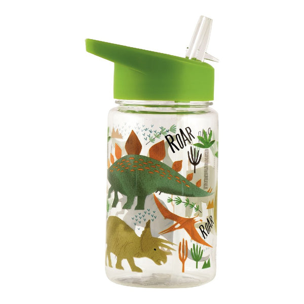 Dinosaur Straw Water Bottle