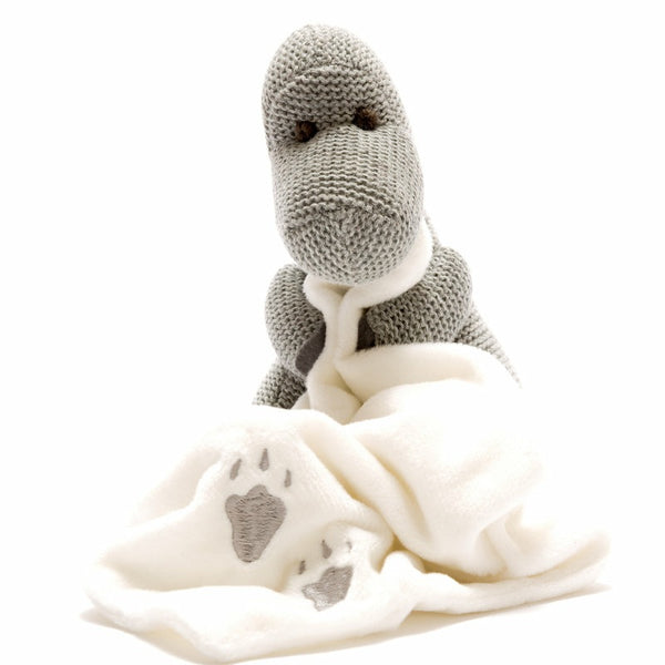 Dinosaur and Blanket Soother Toy
