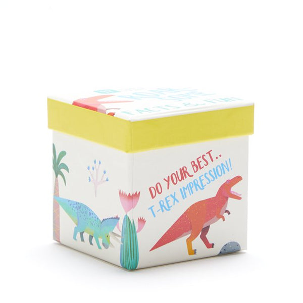 Dinosaur Fun Facts and Game Box
