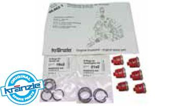 Repair Kit Valves for AQ Pump