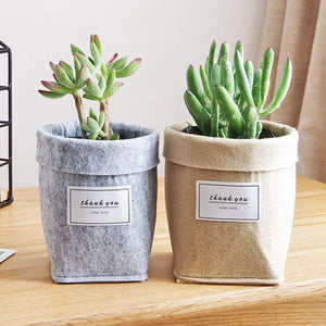 Plant Bag For Desk Or Gift