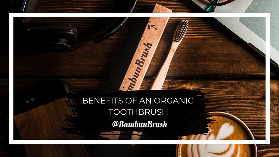 Benefits of an Organic Toothbrush - Bamboo - Eco Friendly Products