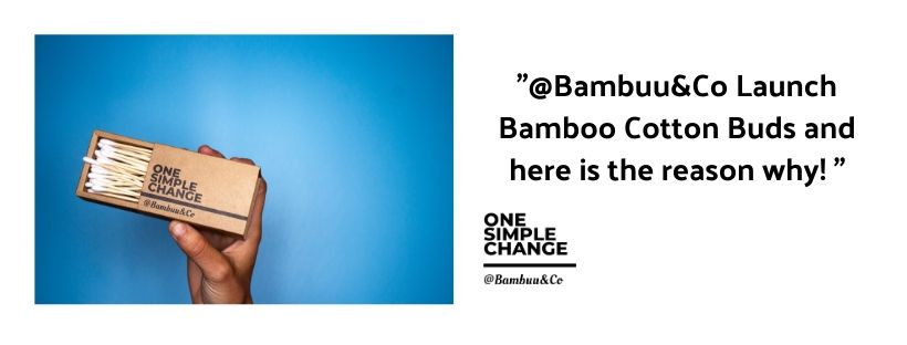 @Bambuu&Co Launch Bamboo Cotton Buds and here is the reason why!