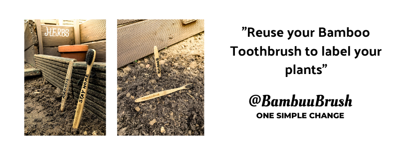 REUSE YOUR BAMBOO TOOTHBRUSH TO LABEL YOU PLANTS.