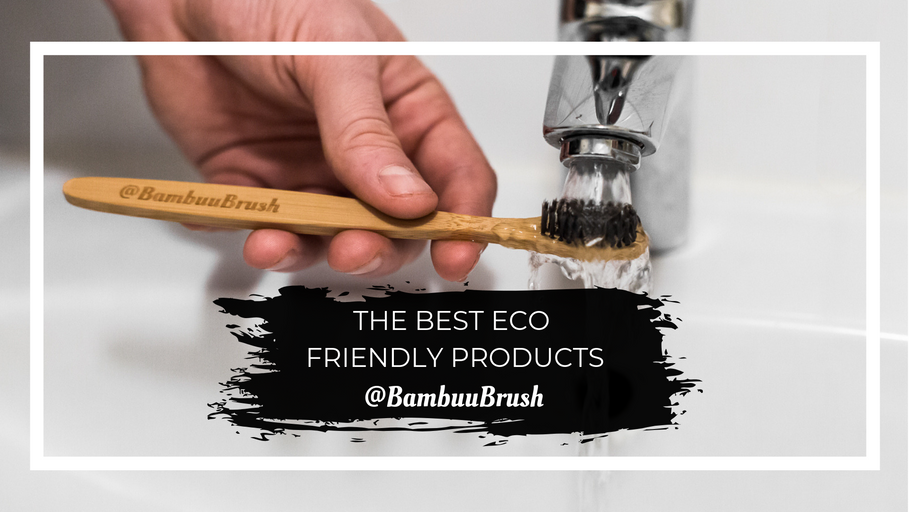 Best Eco Friendly Products 2019
