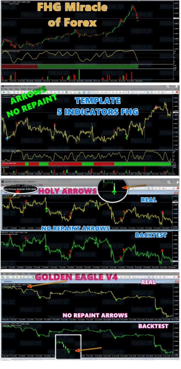 FHG Miracle of Forex