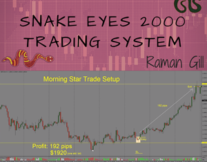 Snake Eyes 2000 Full Time Forex Trading Course by Raman Gill's from Trading Strategy Guides