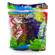Aqua Plants Coloured Plant 6pk, 8