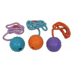 Good Boy Rubber Ball On Rope assorted colours