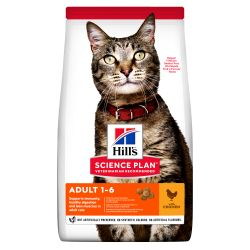 HILL'S SCIENCE PLAN Adult Dry Cat Food Chicken, 300G
