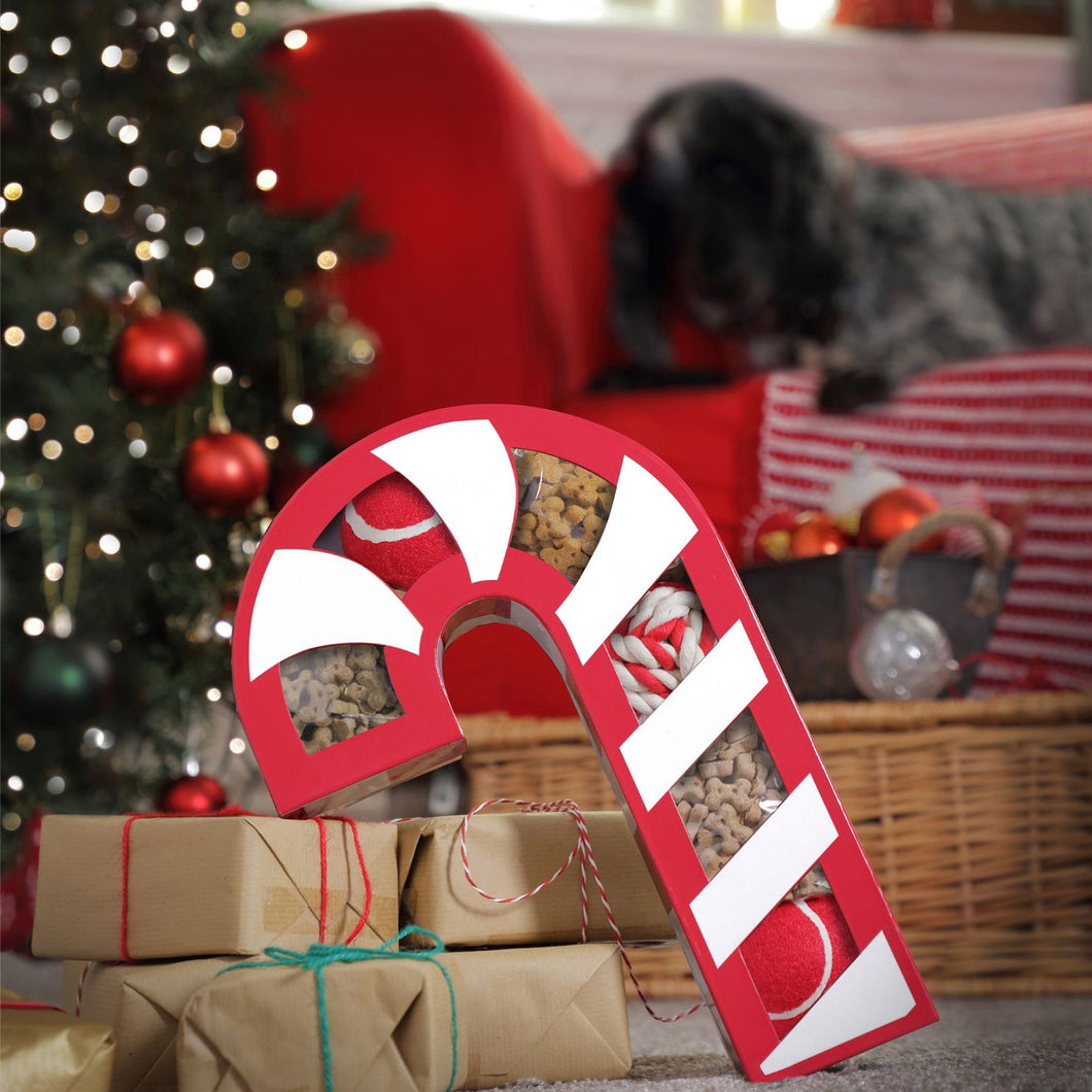 Candy Cane Gift Box for dogs