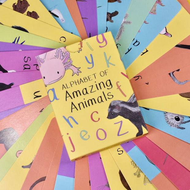 button squirt alphabet of amazing animals flash cards