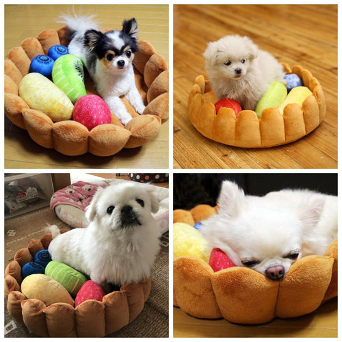 Pet - Fruit Tart Pet Bed