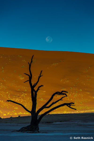 Moon over Sossusvlei 009, Namibia