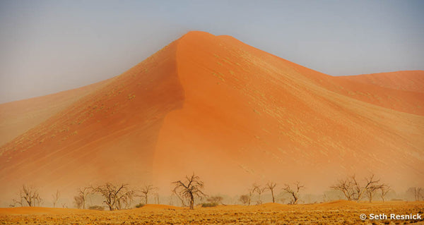 Transformation, Namibia