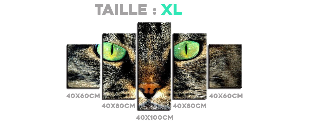 Tableau Taille XL